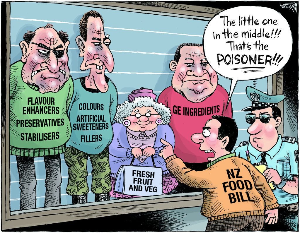 A Great Cartoon Scathing On The Proposed Nz Food Bill