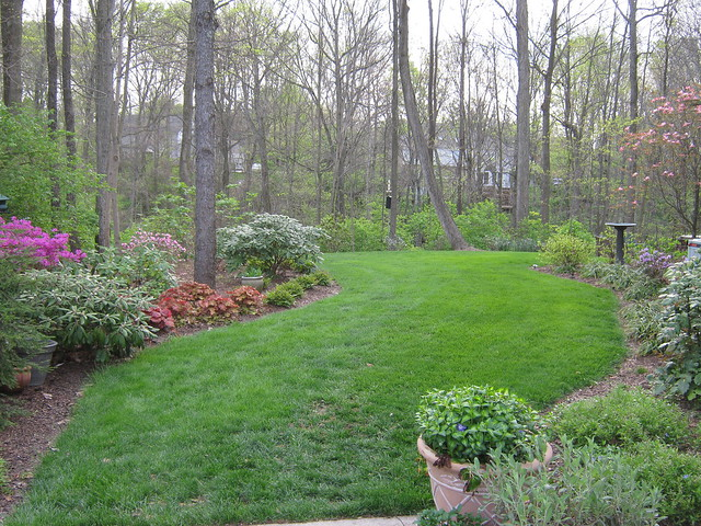 Backyard Garden Box Ideas