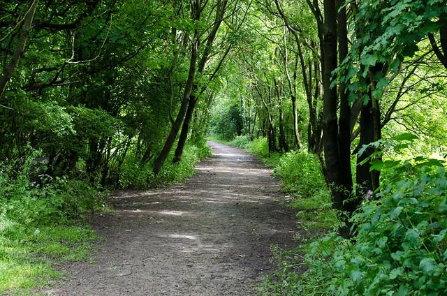 Green_Corridor_TOP_4_Popular_City_Parks_in_Manchester_3