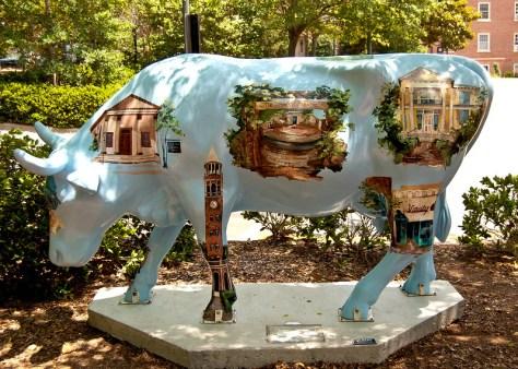Chapel Hill NC