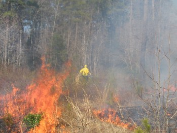 Photo of firefighter battling a brush fire