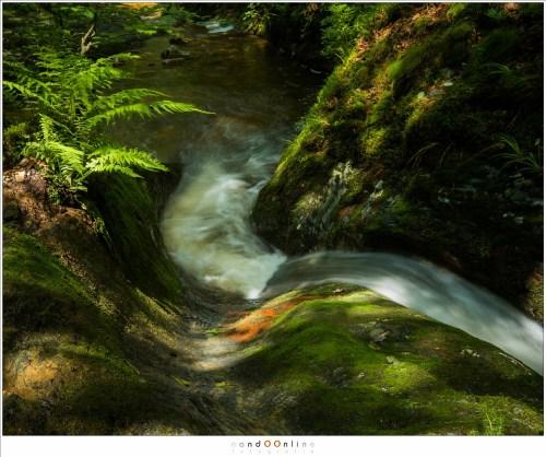 Prachtige lijnen in het landschap, met een spel van licht en schaduw. (24mm - ISO200 - f/16 - t=0,5sec - Lee landscape polariser)