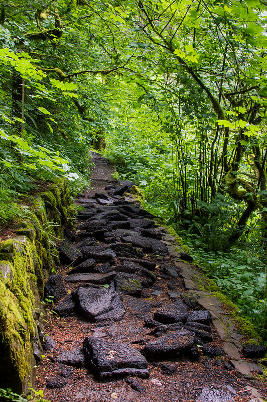 Multnomah Falls Trail Washington