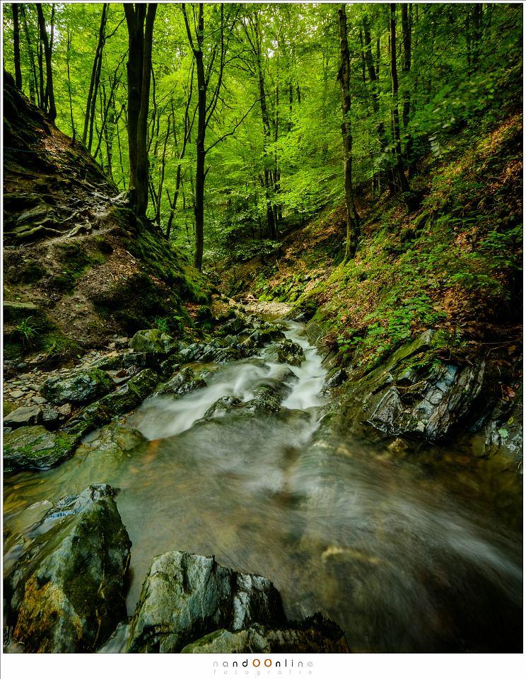 Het water heeft zich een weg door het dal gebaand. Het pad volgt het water, bijna onherkenbaar over de heuvel en tussen de bomen aan de linkerkant. (10mm - ISO200 - f/16 - t=2,1sec - Lee landscape polariser + 0,6ND soft gradient)