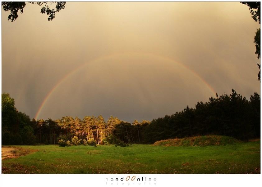 Staat de zon laag aan de hemel, dan steekt de regenboog hoog boven de horizon uit. (Canon EOS 1D3 + EF15mm fisheye | ISO200 | f/8 | 1/60)