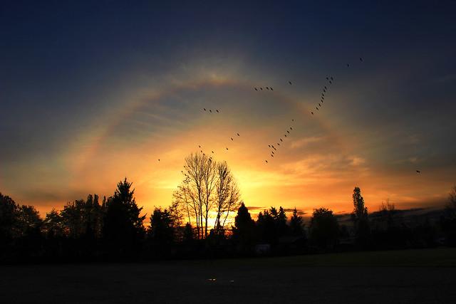 unreal sunrise