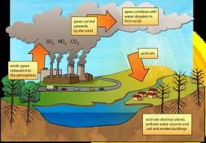 Acid rain diagram | Illustration used in Gr 79 Natural