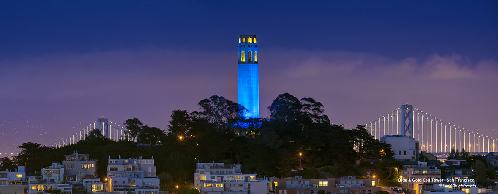 Blue Amp Gold Coit Tower San Francisco Blue Amp Gold Coit