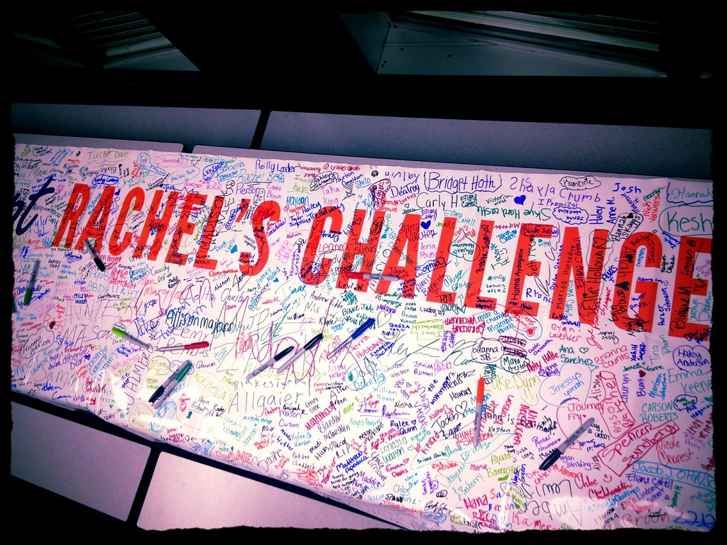 Rachel S Challenge Banner Signed By Kids And Teachers