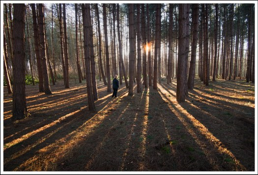 leading lines landscape photography