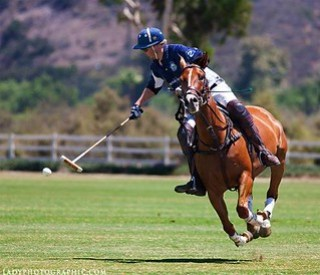 A Polo Shot by Vanessa Hughes of Lady Photographic