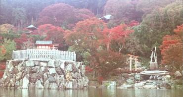 底片︱Canon AE-1P × 旅日生活_05. 勝尾寺、箕面國定公園