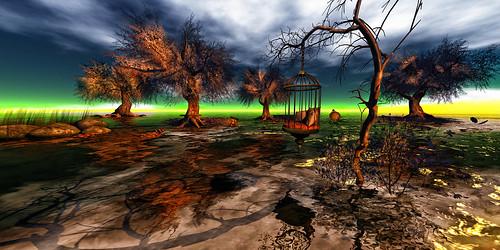 The Wetlands at Duet