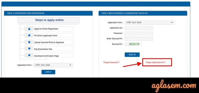 CTET Application From Correction