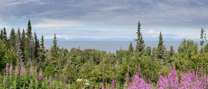 View above Cook Inlet to Chigmit Mountains in Aleutian Range