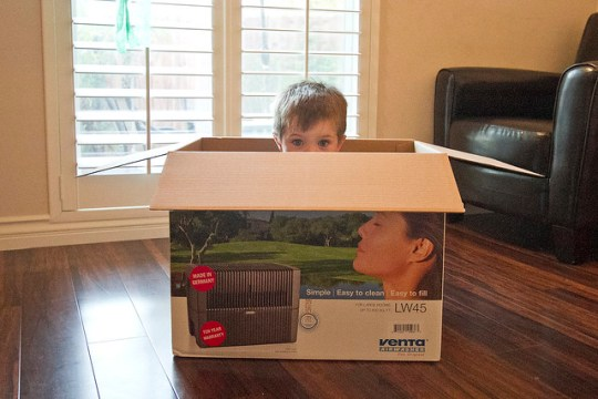 venta (boy not included)