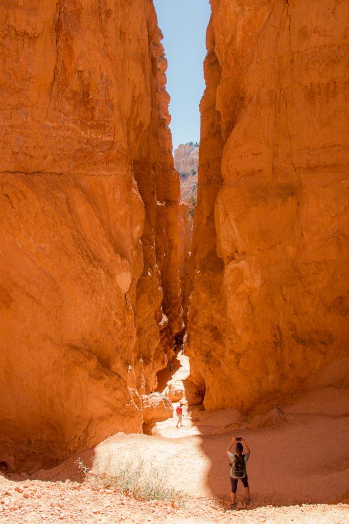 09.08. Bryce National Park: Navajo Loop