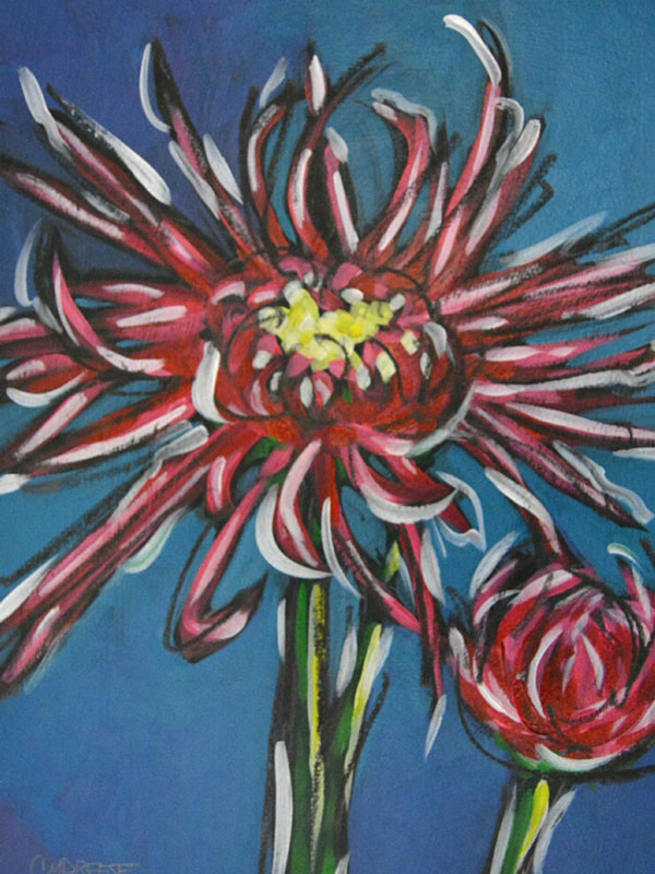 meijer garden flower by christi dresee