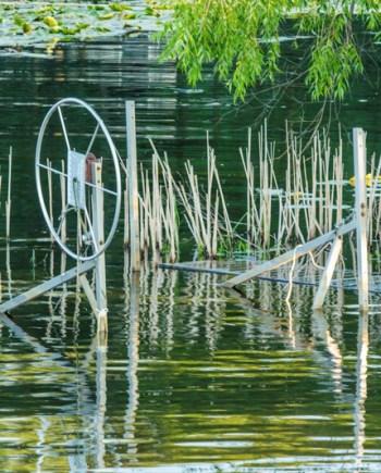 Summer Evening on the Bayou by Bob Walma
