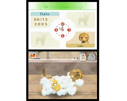 Nintendogs Dachshund And Friends Preowned EB Games Australia