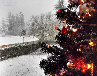 20161223 - Xmas & Snowfall