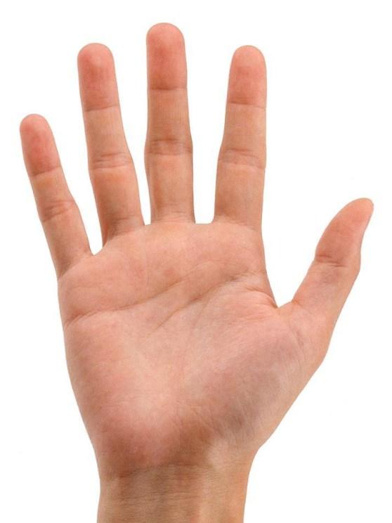 Apa kamu butuh smartphone yang lebih besar tangan