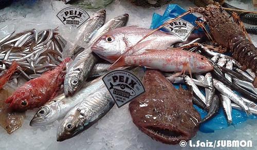 Peix de custòdia a peixateria zoom