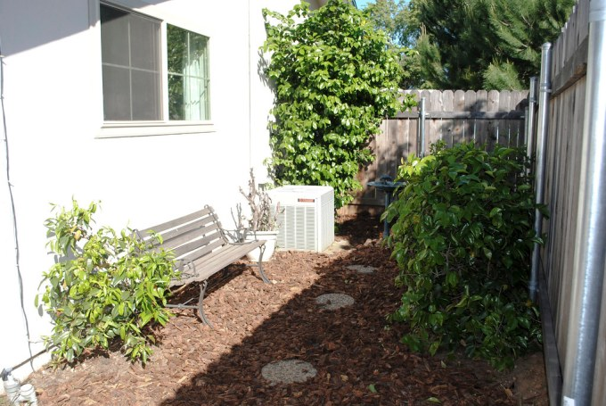 Back Yard and Patio