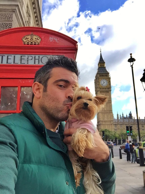 Viajar con Mascota mascotas Cómo viajar con perros y mascotas 30639350290 3ed2a7b517 o
