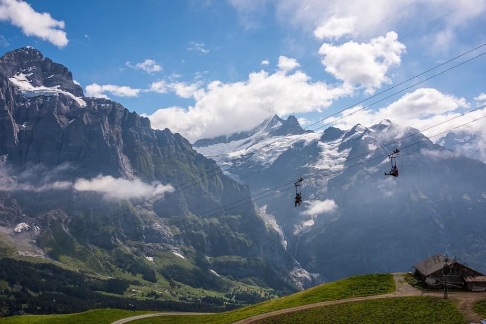 top of adventure grindelwald