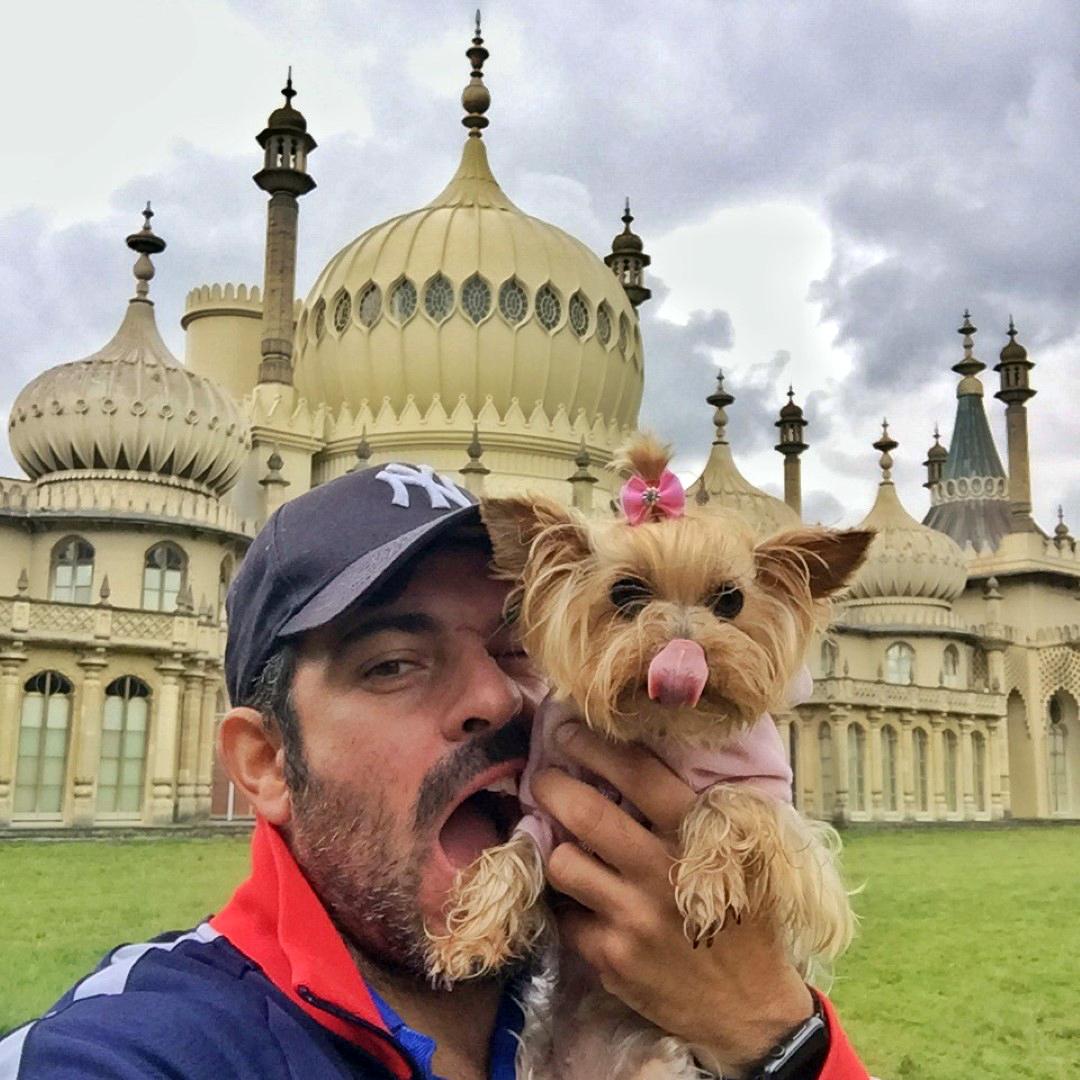 Viajar con Mascota mascotas Cómo viajar con perros y mascotas 22762393418 047e27f16d o