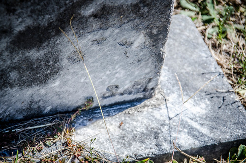 Generostee ARP Church and Cemetery-029