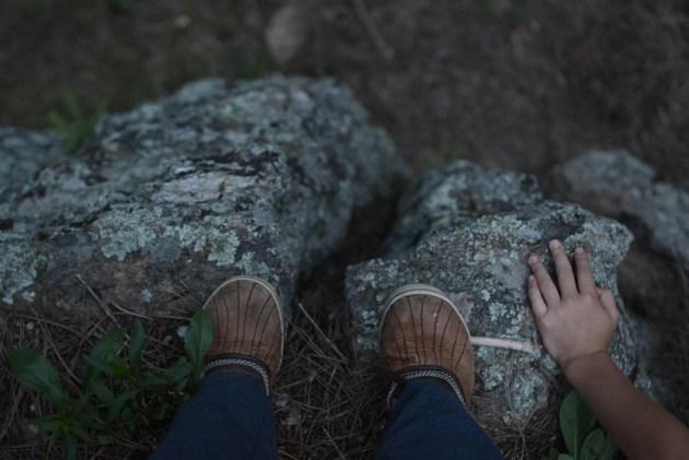 Night 3, Custer State Park