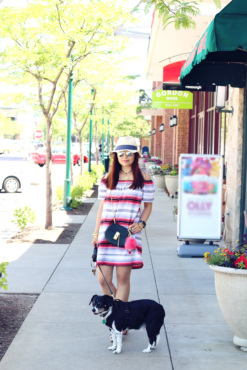 stripe-dress-summer-outfit-beagle-dog-5
