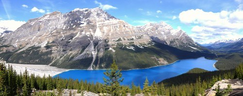 Things to do in Banff and Jasper: Peyto Lake