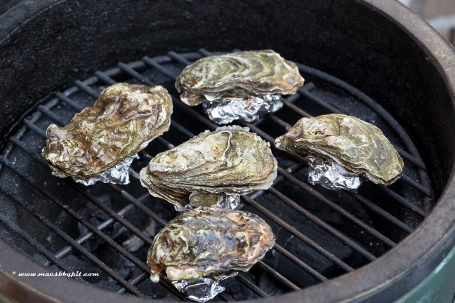 Barbecue oesters