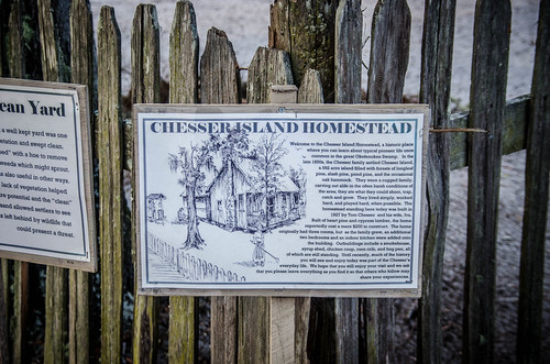 Chesser Homestead-003