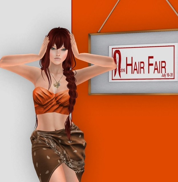 Hair Fair in the Frame