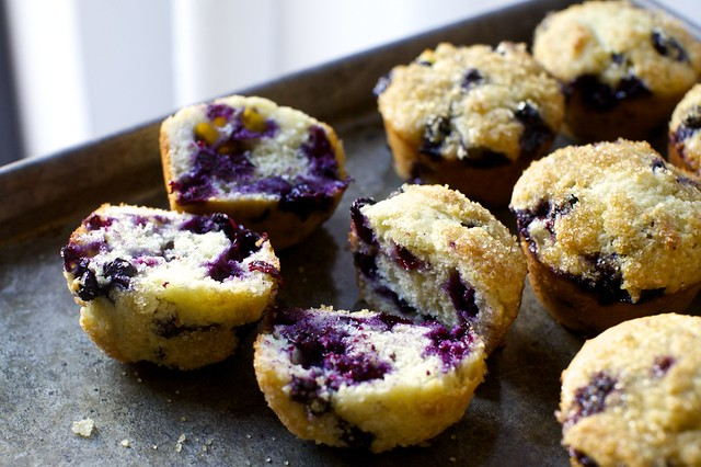 even more perfect blueberry muffins