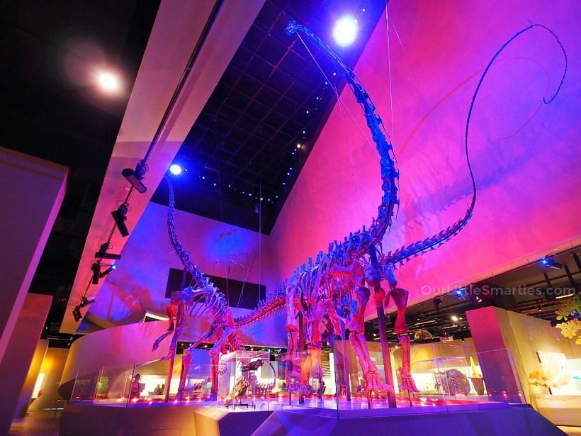 Lee Kong Chian Museum