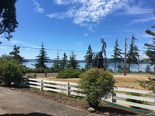 Samish Island Backyard