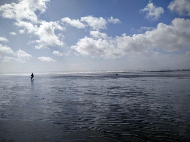 Saunton Sands beach - Chewie galloping after the ball, as I walk after.