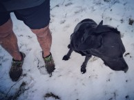 Windy, snowed under... ready to run