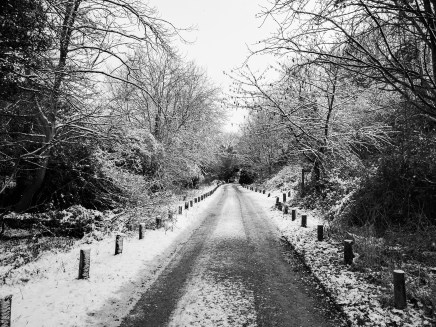 Far end of the run ... in winter wonderland