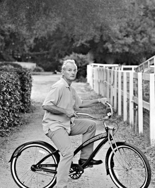 We all ❤ Bill Murray