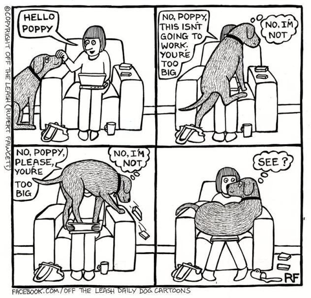 I'm a small puppy!