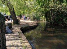 The oh-so-inviting stream in Shere