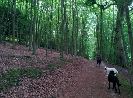 Chantries with two other interlopers
