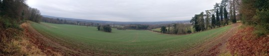 View from Hogs back towards Manor copse