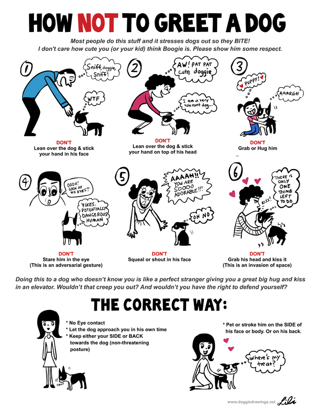 Understand Dog Language Chart 3